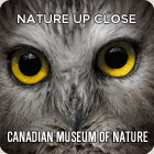 Canadian Museum of Nature, Ottawa