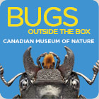 Bugs at the Canadian Museum of Nature Ottawa