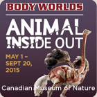 Animal Inside Out BodyWorlds, Canadian Museum of Nature, Ottawa