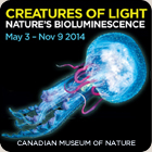 Creatures of Light Nature's Bioluminescence at the Canadian Museum of Nature, Ottawa