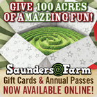 Christmas ideas from Saunders Farm!