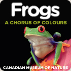 Frogs - a Chorus of Colours - at the Canadian Museum of Nature, Ottawa